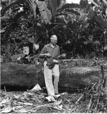 Alexander Wetmore in Panama, 1947.