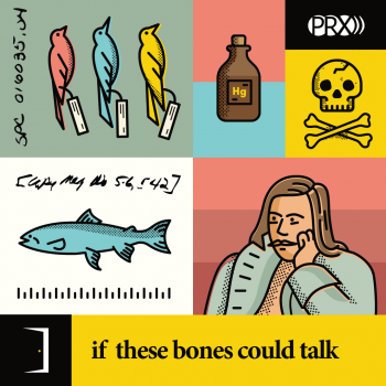 Sidedoor Season 2: if these bones could talk
