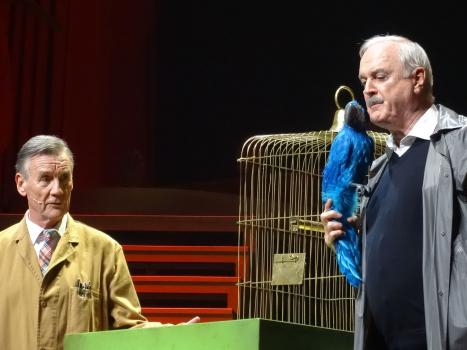 Two men stand on a stage.One man is holding a blue parrot. Both are staring at the parrot. A cage is