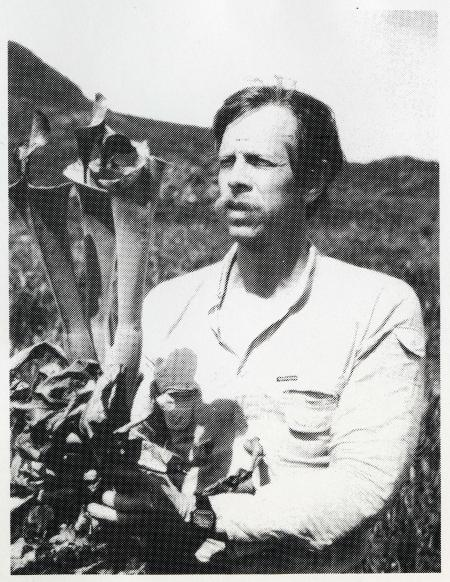 Dr. Charles Brewer examines one of the giant pitcher plants with 18-inch-long leaves living on Cerro