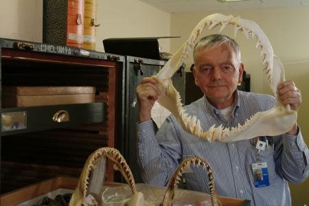 Paleontologist Robert Purdy
