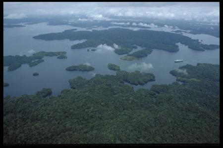 Aerial view of Barro Colorado Island at the Smithsonian Tropical Research Institute, c. 1986, Access