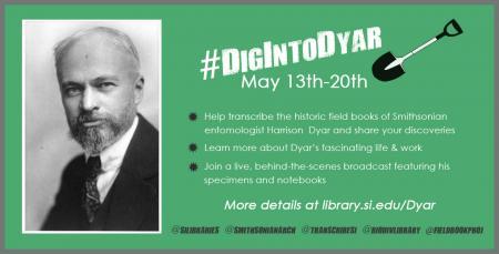 #DigIntoDyar