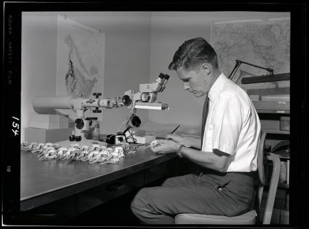 Dr. Richard L. Zusi Examines Bird Skulls