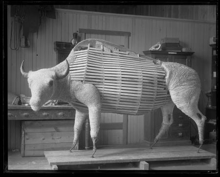 Manikin for Taxidermy Mount of Bull