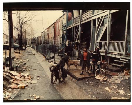 Four African American boys with three dogs and a bicycle in an alley cluttered with trash, by Robert