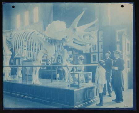 Visitors view a papier mache replica of a Triceratops skeleton at the Pan-American Exposition