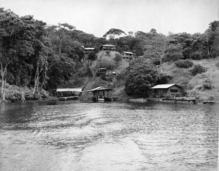 Barro Colorado Island from Gatun Lake, 1950, Record Unit 50, Smithsonian Institution Archives, neg.