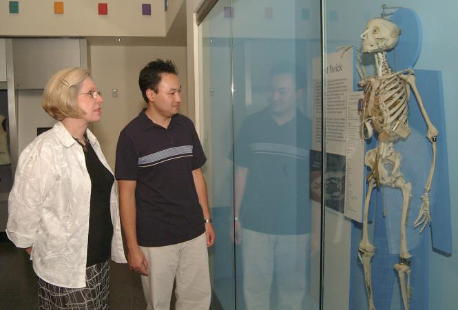 Interior view of two visitors looking at a skeleton with prosthetics behind glass.