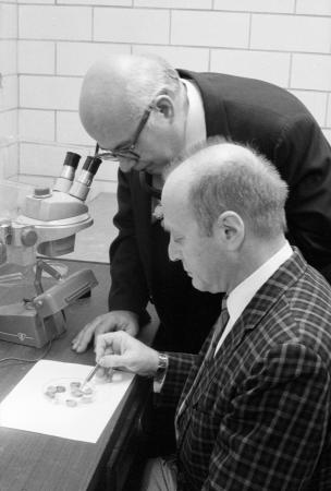 Study of Snails with Dr. Louis S. Kornicker and Dr. I. Gregory Sohn,