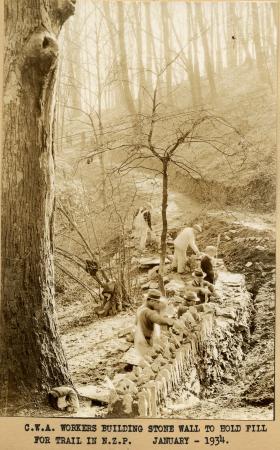 "Men work in a line in a wooded area. The caption on the photograph reads: ""C.W.A. Workers Building S"