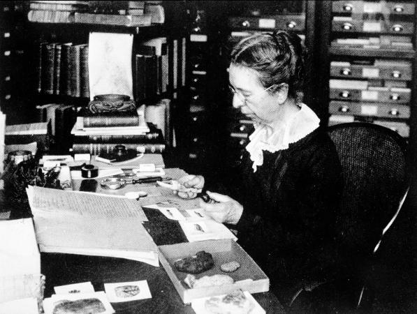 A black-and-white picture of Mary Jane Rathbun working at her desk at the Smithsonian Institution.