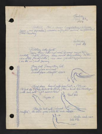 Image of Moynihan's field book entry concerning drawings of Ring-billed gulls, dated April 24, 1954.