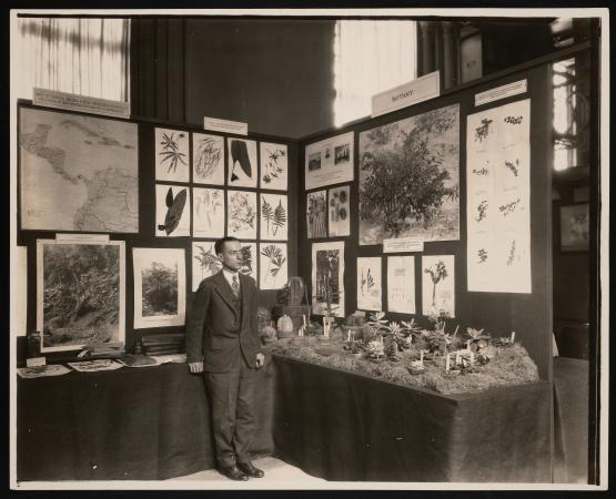 A man leans against a corner of an exhibit about botany at the Smithsonian. Specimens are pasted on