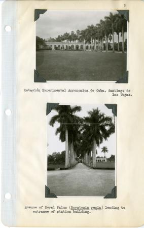 Journal of Field Explorations, Volume 1, Page 6