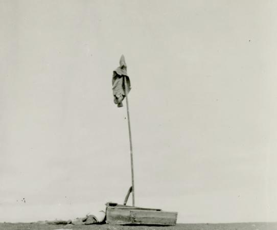 The mast and signal flag raised on Marchena Island by the castaways (detail),