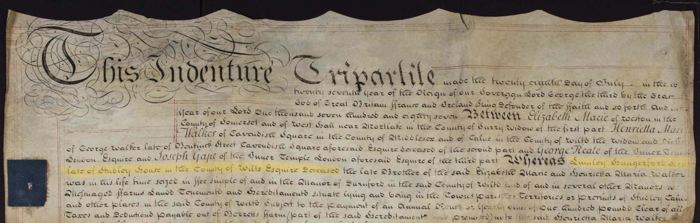 A close-up view of a parchment sheet, with a wavy indented top edge, covered closely with black ink