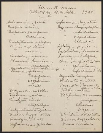 Mary F. Miller's handwriting on a document that lists all of the Vermont Mosses she collected in 190