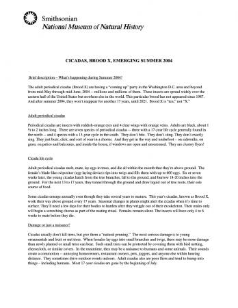 Press release about cicadas from 2004.