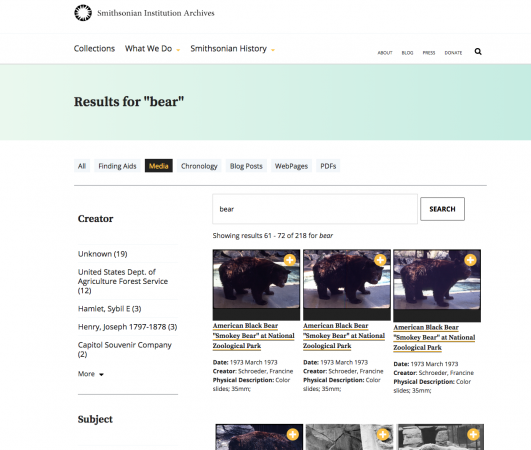 "Screenshot of a wepbage where the user typed ""bear."" Three photographs of bears were in the results"