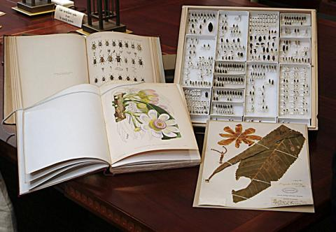 Botanical and entomological specimens.