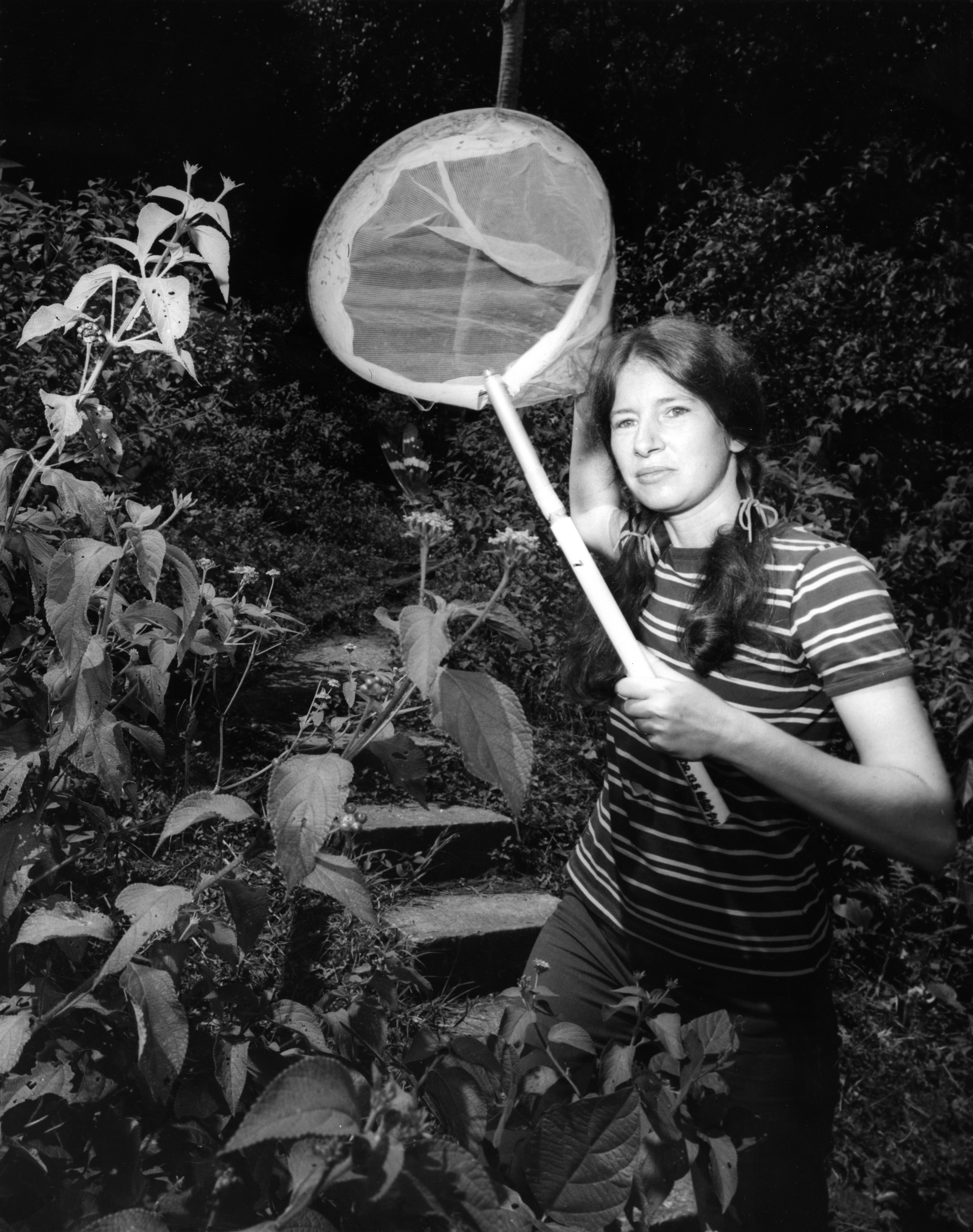 A young Aiello holds a net near bushes of plants.