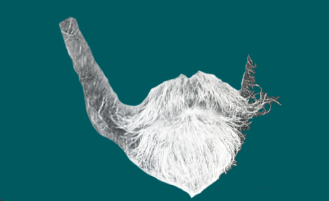 Cut out image of a light-colored beard and mustache.